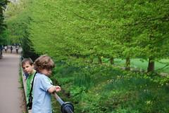 Second cousins in the Cambridge spring (Basse911) Tags: uk trees cambridge england green unitedkingdom britain gb finnish secondcousins