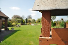 Bird Table in Garden (crwilliams) Tags: garden date:month=april date:day=17 date:hour=12 date:wday=sunday date:year=2011