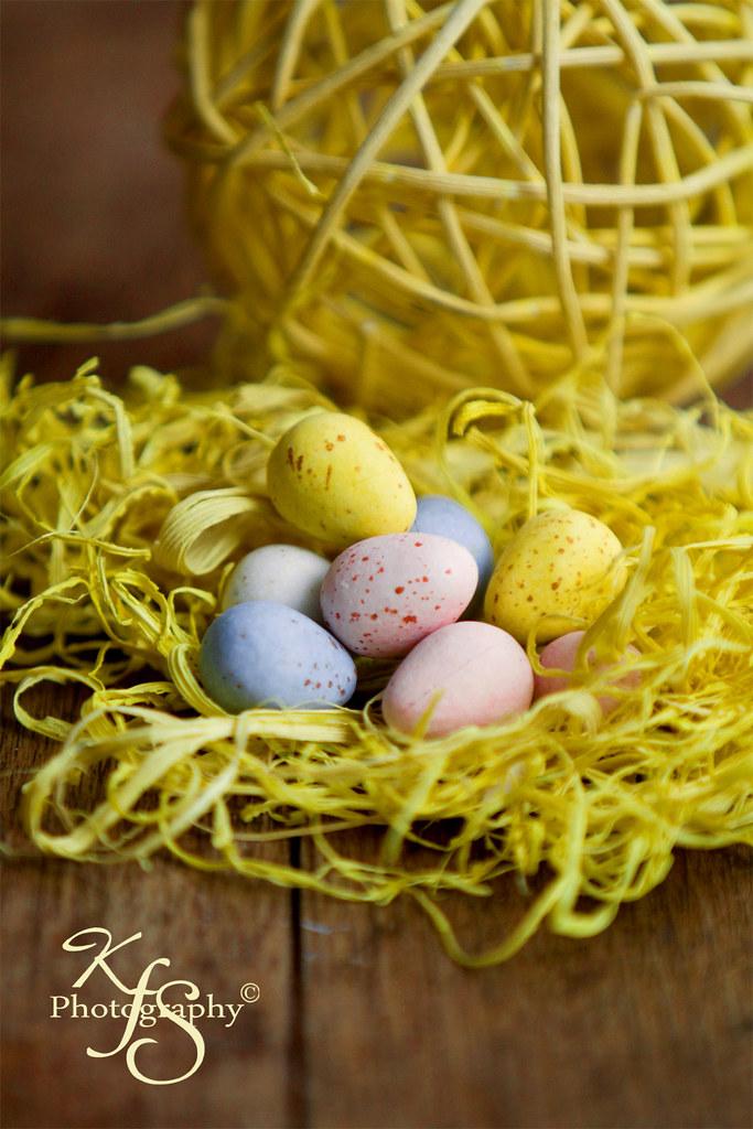 Yellow Grass and yummy choco eggs!