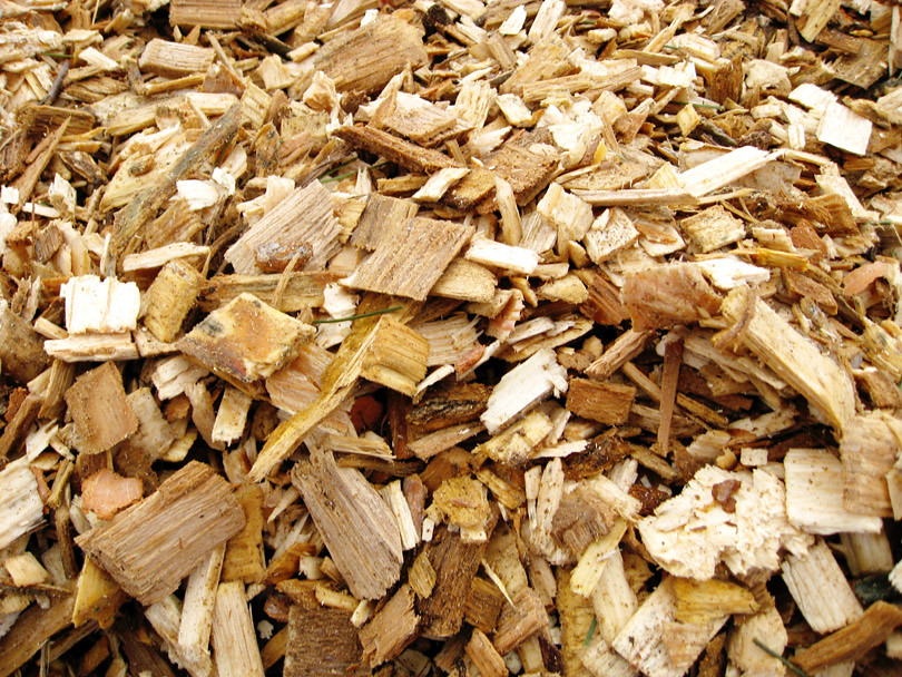 Woodchips from Dundee