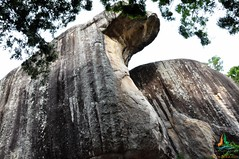 Cobra Hood Cave (Sigiriya)