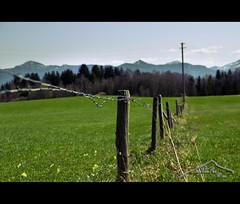 HFF  (mcPhotoArts) Tags: fence germany bayern deutschland bavaria spring meadow wiese zaun springtime garmischpartenkirchen frhling uffing sigma1770mm2845dcmacro photoshopcs4 canoneos550d mcphotoarts2011 gapaland ffgapashow
