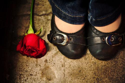 """""""Ma ogni sera ho comprato una rosa..."""""""