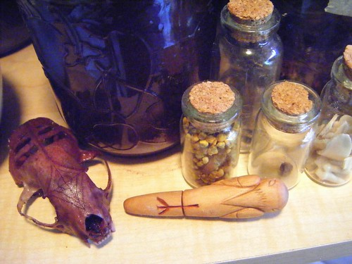 Mink skull, blood-letter, and spirit vessels