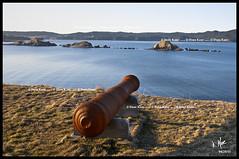 Ferryland (Dana Kane) Tags: canada newfoundland coast nikon coastal nl seashore avalon ferryland d90