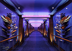 Allure of the Seas - Studio B (DiGitALGoLD) Tags: sea nikon florida hallway fortlauderdale cruiseship royalcaribbean allure caribbeansea gitzotripod studiob royalcaribbeaninternational nikond3 1424mm digitalgold allureoftheseas allureoftheseasstudiob