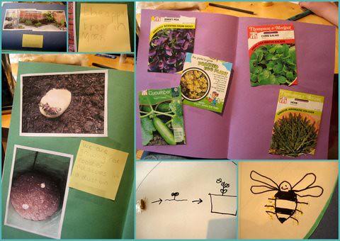 garden project resources