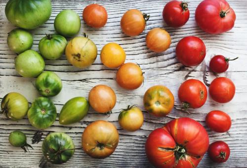 garden tomatoes....