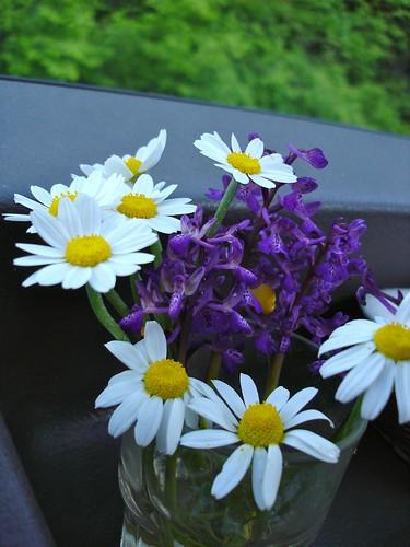 Fleurs de camion