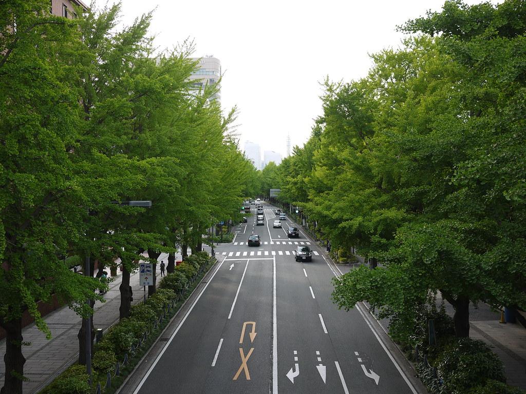 Yamashita Park St.