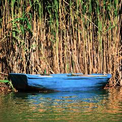 Marsh / Palude (Giorgio Ghezzi) Tags: water boat barca marsh acqua palude giorgioghezzi