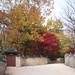 창덕궁 Changdeokgung Palace Complex