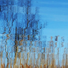 ripple (henk hessel photography) Tags: trees lake reflection reed pattern abstraction woerdenseverlaat