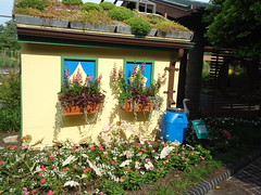 Kemper Children's Garden