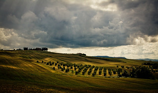 110608_777_Toscana