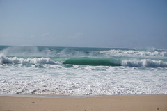 DSC05121 (neilreadhead) Tags: awt1 hawaii oahu waimeabay