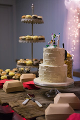 The Cake (janedsh) Tags: sharpfamily horner people morgan holman photography wedding photo by jane holmanphotoscom ed holmanphotography photobyjane