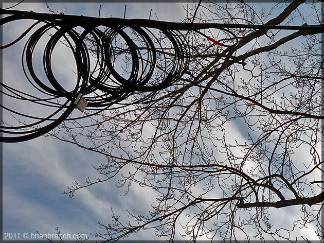 P1140671_wires