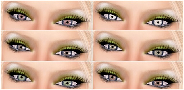 Apple Spice - Eyes 1-6 FATPACK