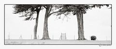 knocking on heavens door (look-book) Tags: blackandwhite bw white black film analog blackwhite foto trix bretagne d76 fotos sw analogue f56 90mm xpan lookbook selfdeveloped analogous analogicas análogo