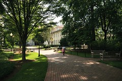 a path on campus (by: Georgia Popplewell, creative commons license)