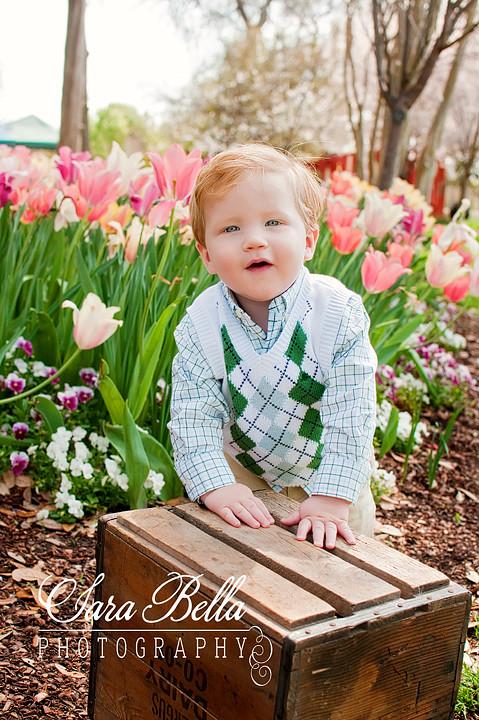 3-19-2011 Amy Tulips (11) copyweb
