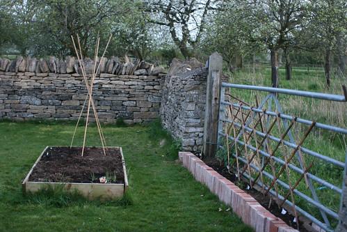 Garden situation