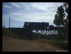 Mis favoritas (Fepasas en la Araucania) Tags: tren puente 1600 1610 fepasa 16000 quillen