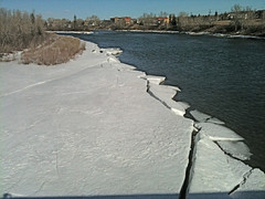 Bow River Ice Photo