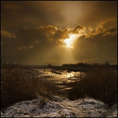 In the winters light (adrians_art) Tags: winter sky plants cloud mist snow water grass sunrise reflections reeds dawn early horizon rivers wetlands rays riverbank mudflats marshland