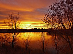 Good Day Sunshine (Ph0tomas) Tags: trees sunset sky sun lake newmexico water clouds sunrise reflections river landscape lumix pond g wideangle g1 f4 714 bario mygearandme mygearandmepremium mygearandmebronze mygearandmesilver ph0tomas