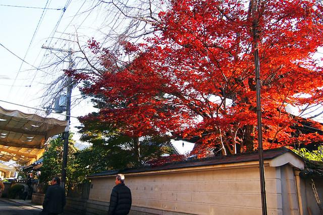 20101120_150805_吉野山