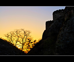 Sunset over Kumbhalgadh Fort (PNike (Prashanth Naik..back after ages)) Tags: blue trees india silhouette nikon fort kingdom rajasthan udaipur sunstet kumbalgadh pnike