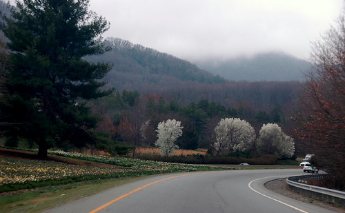 Great Smokey Mountain Ride  by Davidlind