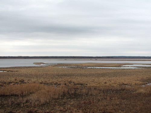 Dixon Waterfowl Refuge