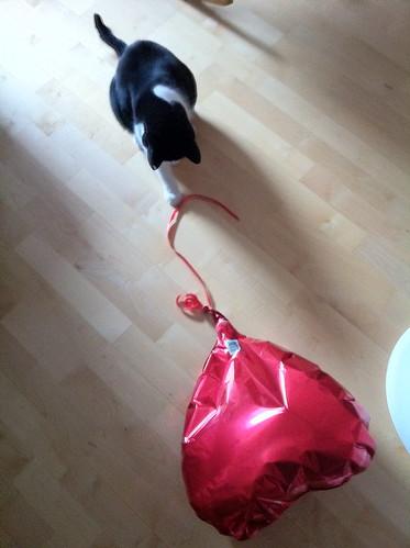 The last balloon