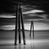 Tripods (~ superboo ~ [busy busy]) Tags: wood longexposure reflection bird beach water field clouds contrast bay sticks san francisco sunny tripods crissy silverefexpro bigstopper