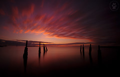 Sunrise @ Kingscote jetty (The Eternity Photography) Tags: longexposure orange cloud reflection colors clouds sunrise canon still movement cityscape au 110 wide australia wideangle filter nd colourful southaustralia 1022mm ki tyres kangarooisland 10mm bwfilter ndfilter 2011 kingscote superwide 1000x neutraldensityfilter 10stop 40d nd30 bw110 canoneos40d 10stopndfilter canonefs1022mmf3545usmlens santanubanik santanubanik        wwwfrozenforeternitycom wwwmomentsofnaturecom nepeanbay bwneutraldensityfilter110 kingscotejettyjetty