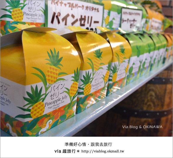 【via的沖繩旅誌】名護鳳梨公園~可愛又香甜的鳳梨樂園!19