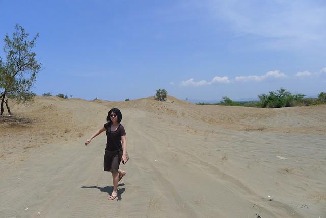La Paz Sand Dunes (8)