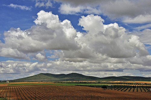 Viñedos de La Mancha - Vineyards of La Mancha by Marco Antonio Losas