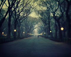 The music of chance - New York City photograph (IrenaS) Tags: road nyc newyorkcity blue trees mist blur fog night lights spring twilight moody bokeh dusk path centralpark manhattan mysterious haunting dreamy barebranches wwwirenesuchockicom