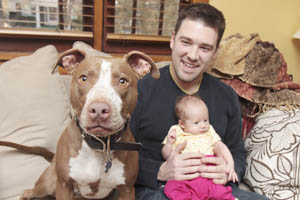 Pit bull family dog with man and baby