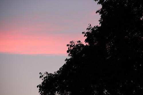 pink cloud band