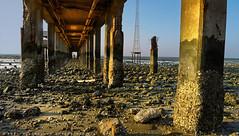The art of light (khalid almasoud) Tags: lighting leica bridge light sunset sea art beach june coast rocks flickr all photographer 5  columns rights estrellas kuwait khalid reserved formations dlux  almasoud flickraward  dlux5 thebestofday gnneniyisi leicadlux5