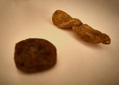 Dried Apricot (Cam, M. Numan) Tags: dried naturmort apricot