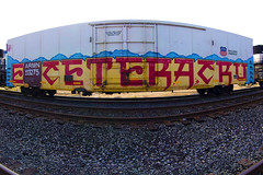 ETCETERA CRU (TRUE 2 DEATH) Tags: railroad autostitch panorama streetart art ice train graffiti site pano tag graf traintracks trains panoramic railcar font etc axel spraypaint boxcar railways stitched railfan freight reefer snak freighttrain autostitched snafu rollingstock armn sase autopano  asic reser gime stitchedpanorama e2e autopanopro benching dekoy freighttraingraffiti etceteracru ecteteracrew