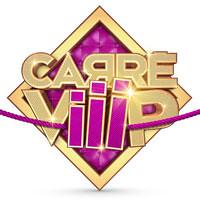 Carré Viiip et Cantonales 2011 : La télé-réalité sauvera-t-elle les hommes politiques ?