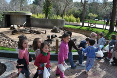orvalle_zoo (6)