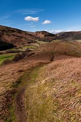 Path across Welsh hills (Etrusia UK) Tags: uk greatbritain sky mountains grass wales clouds geotagged landscapes nikon britishisles zoom unitedkingdom britain tracks sigma wideangle bluesky hills gb paths caminhos rollinghills llangollen pictureperfect vallecrucisabbey d300 sigma1850mm 1850mm sigmalens fastlens 1850mmlens nikond300 sigma1850mmlens welshpaths geo:lat=5298831753487927 geo:lon=31934471705444594